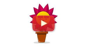 Weird flower youtube